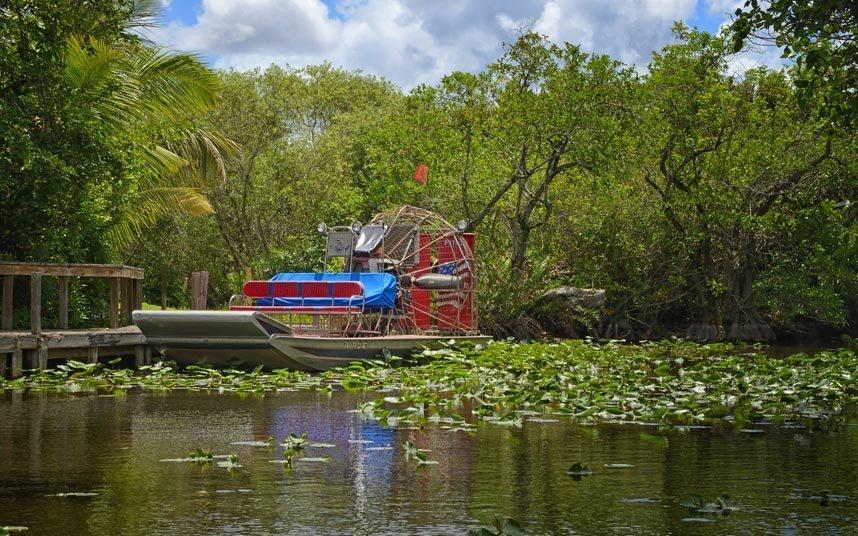 5. Khám phá đầm lầy Everglades, Florida, Mỹ: Everglades là một đầm lầy rộng lớn với hệ động thực vật phong phú, trong đó có hơn 350 loài chim. Tuy nhiên, vùng đất này đang nằm trong danh sách bị đe dọa của UNESCO do ô nhiễm, khiến môi trường sống bị phá hủy và lượng thủy sinh giảm mạnh.