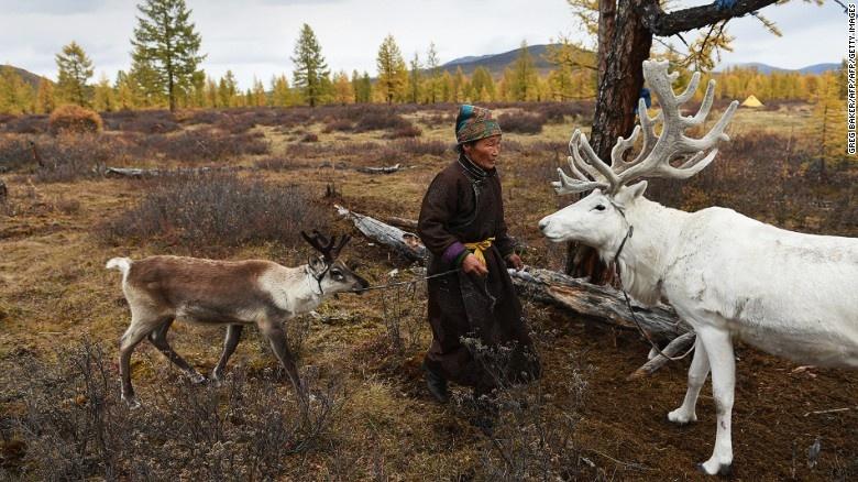 Bo toc chan tuan loc cuoi cung cua Mong Co hinh anh 4 Khu vực săn bắn của người Dukha trở thành công viên quốc gia vào năm 2011, khiến người của bộ tộc gặp nhiều khó khăn hơn.