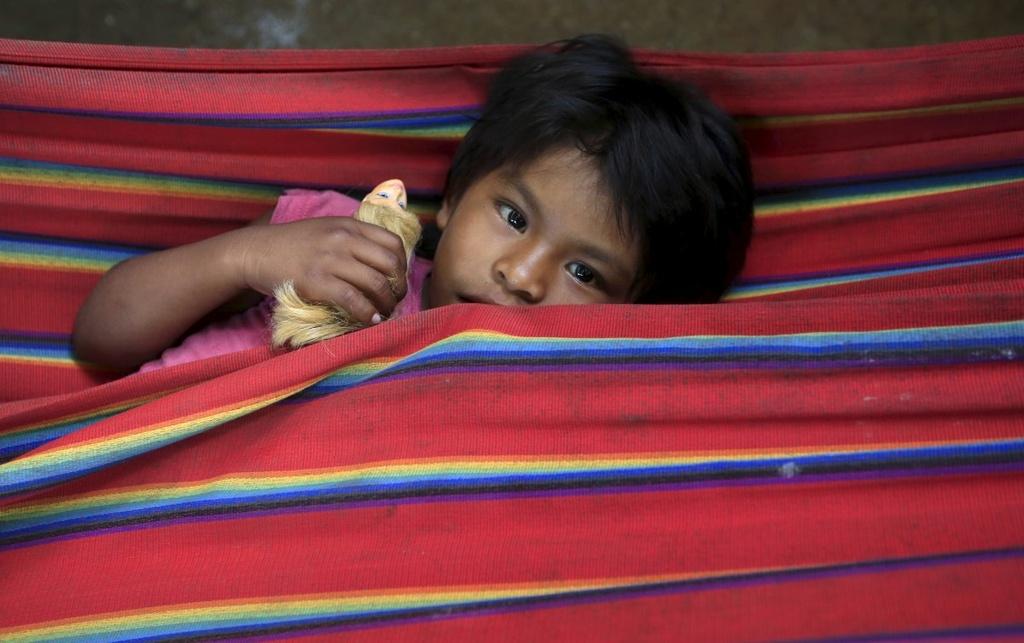 Cuoc song chat vat cua con nguoi trong rung Amazon hinh anh 10 Tuy nhiên, sự thu hẹp diện tích rừng và sự xuất hiện của người không phải thổ dân đã khiến nhiều bộ tộc phải chuyển sang sống định cư.