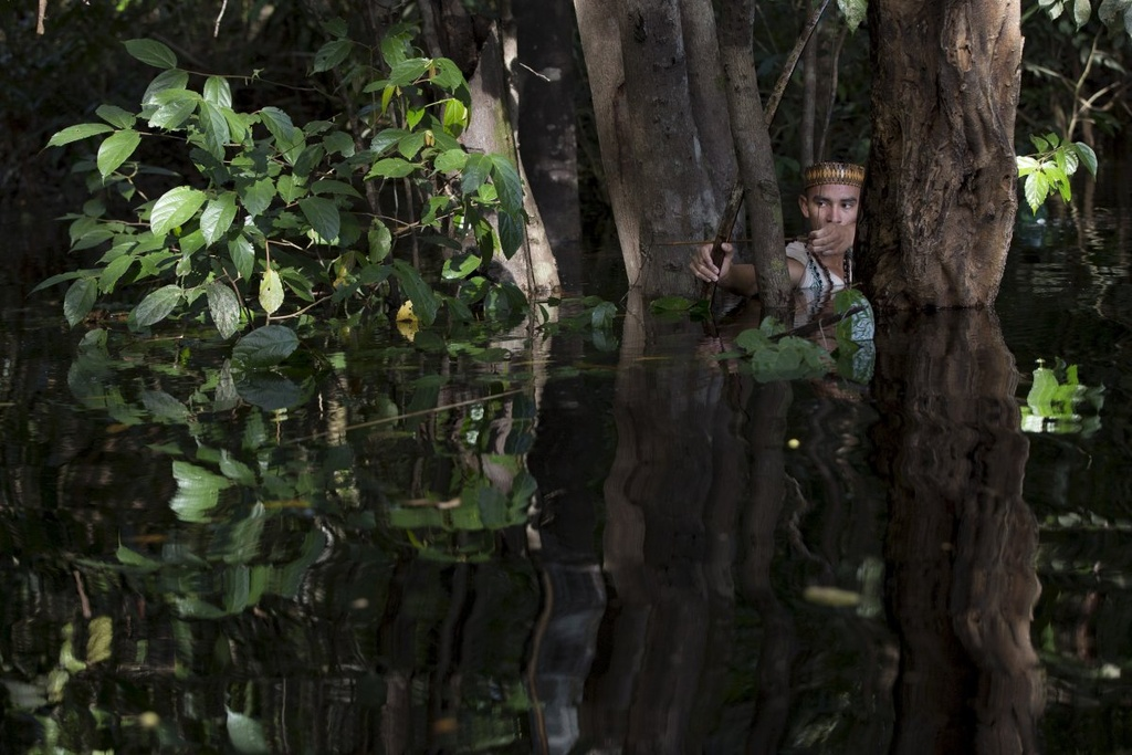 Cuoc song chat vat cua con nguoi trong rung Amazon hinh anh 9 Theo truyền thống, các nhóm săn bắt và hái lượm sống theo kiểu du mục. Họ ở một chỗ trong khoảng 4-5 năm, và chuyển đi sau khi đã khai thác hết tài nguyên thiên nhiên.