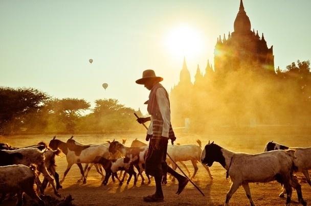 Nhung buc anh cuon hut du khach toi dat Phat Myanmar hinh anh 8