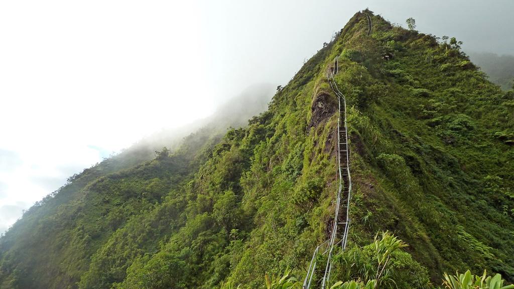 Xich du dang so tren tuyen duong nguy hiem nhat Hawaii hinh anh 3