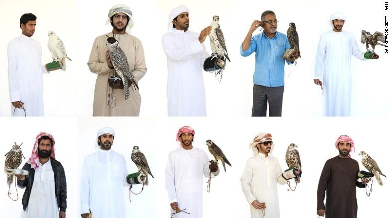 Benh vien chim ung lon nhat the gioi o Abu Dhabi hinh anh 18