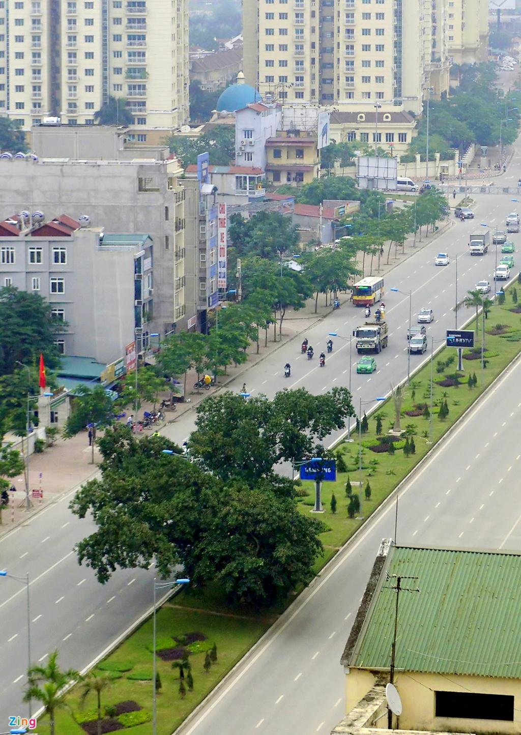 Cay da co thu chan giua cac tuyen duong moi mo hinh anh 5 Trên đường Võ Chí Công, cách cây đa cổ thụ ở làng Nghĩa Đô khoảng hơn một km có một cây đa khác nhỏ hơn cũng được giữ lại ở dải phân cách giữa.
