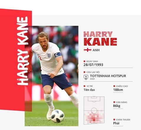 Harry Kane: That bai, kho luyen, bung sang World Cup va so ke Ronaldo hinh anh 4