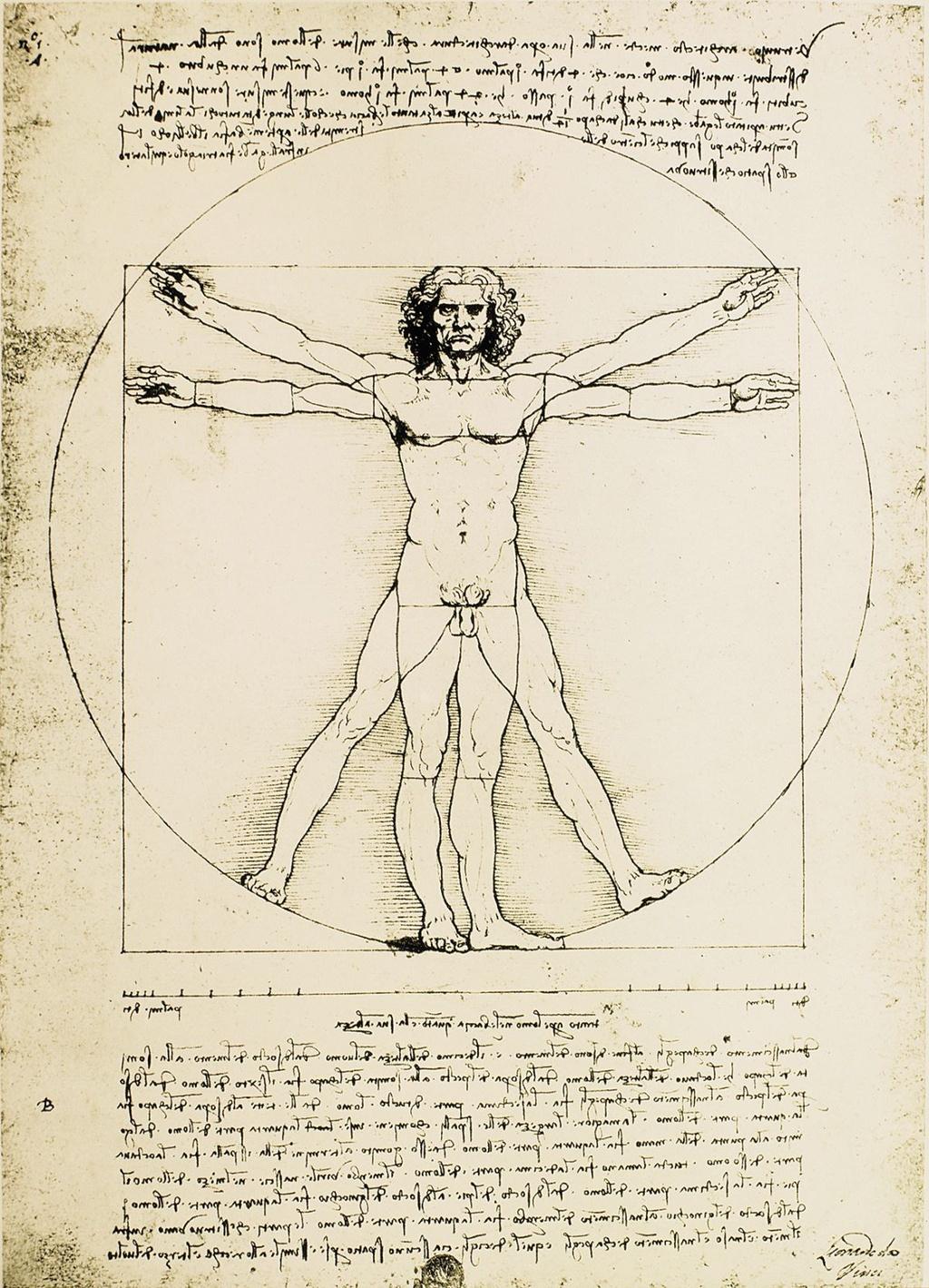 Leonardo Da Vinci anh 5