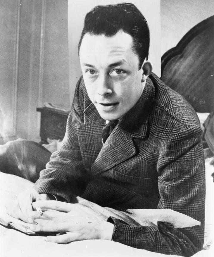 Doc Camus giua thoi Covid anh 3
