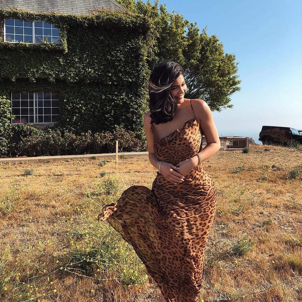 Kylie Jenner - ngoi sao quyen luc va sexy nhat mang xa hoi 2018 hinh anh 13
