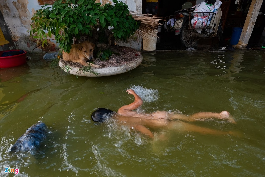 Ngap Nam Phuong Tien Ha Noi anh 10