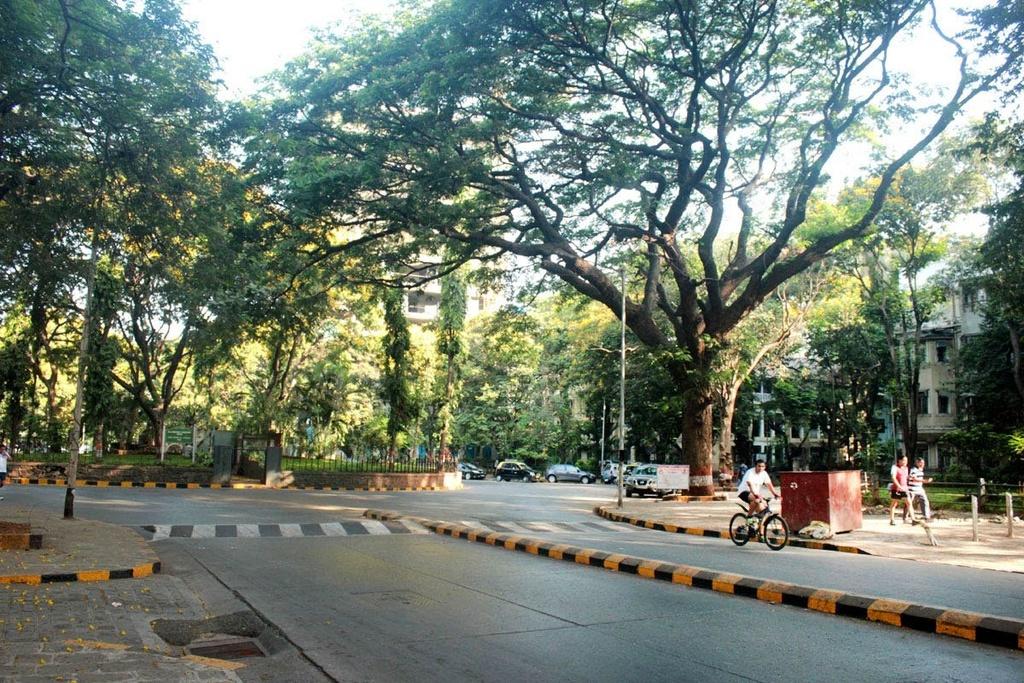 Cong dong nguoi Parsi o Mumbai anh 2