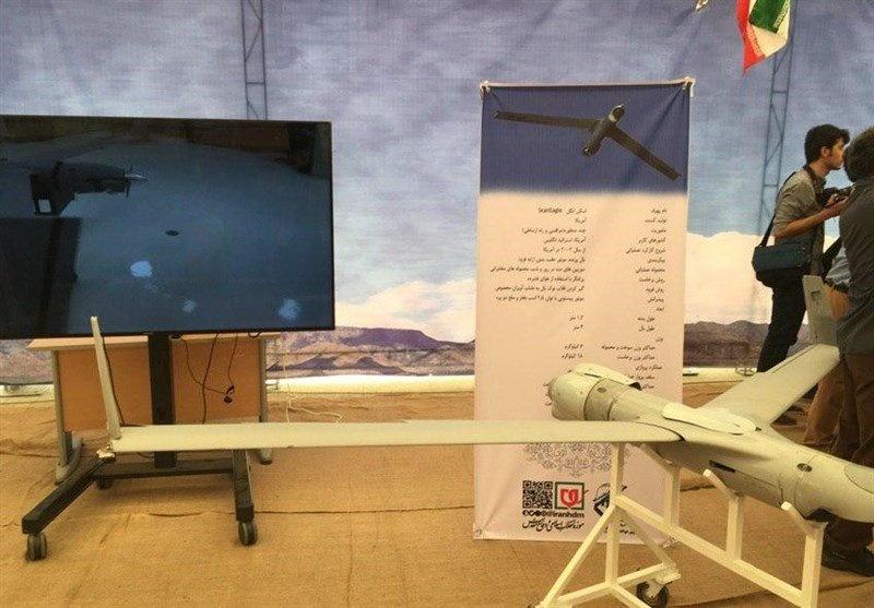 RQ-4 chi chit vet thung - Iran khoe chien tich ban ha UAV cua My hinh anh 10