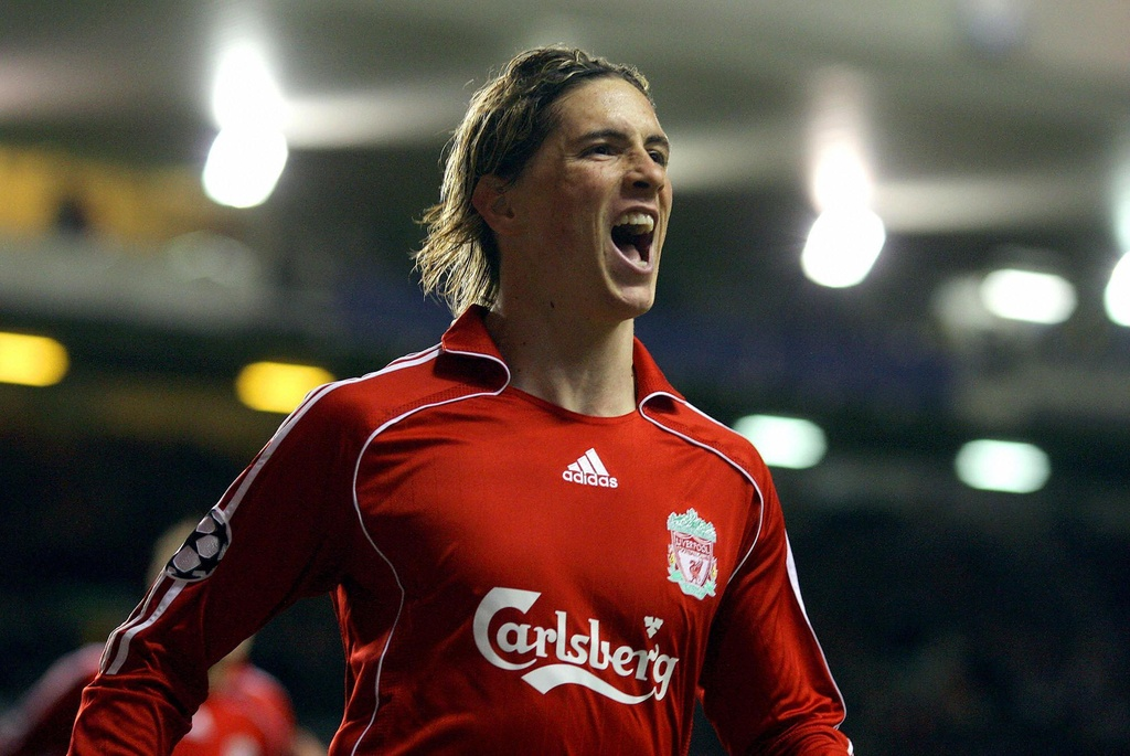 Nhung cot moc dang nho trong su nghiep cua Fernando Torres hinh anh 14