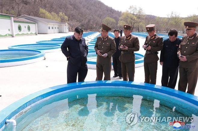 Hinh anh Kim Jong Un trong chuyen tham don vi khong quan hinh anh 5