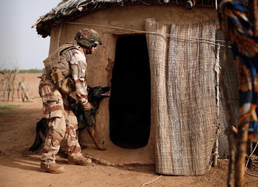 Phap toi Mali tieu diet khung bo nhung mat ca ngay keo xe khoi bun hinh anh 15