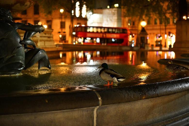 London duoi lenh phong toa anh 6