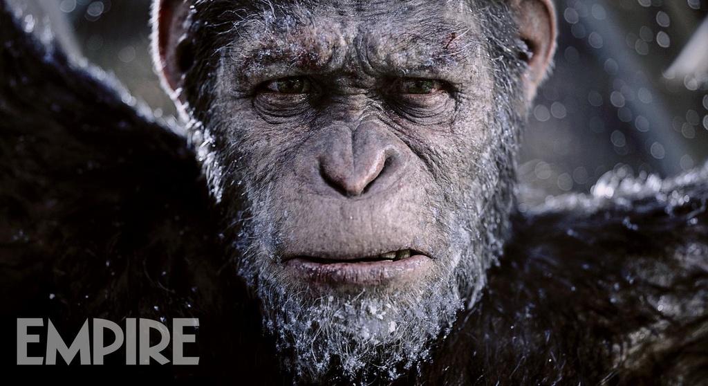 'War for the Planet of the Apes': Cuoc dau tri giua nguoi va khi hinh anh 2