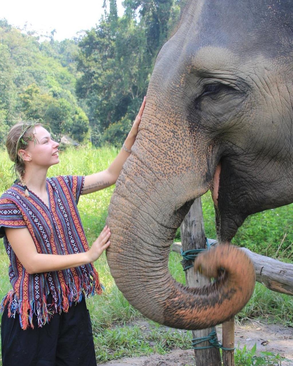 10 goc song ao tai Chiang Mai mua le hoi tha den hinh anh 18