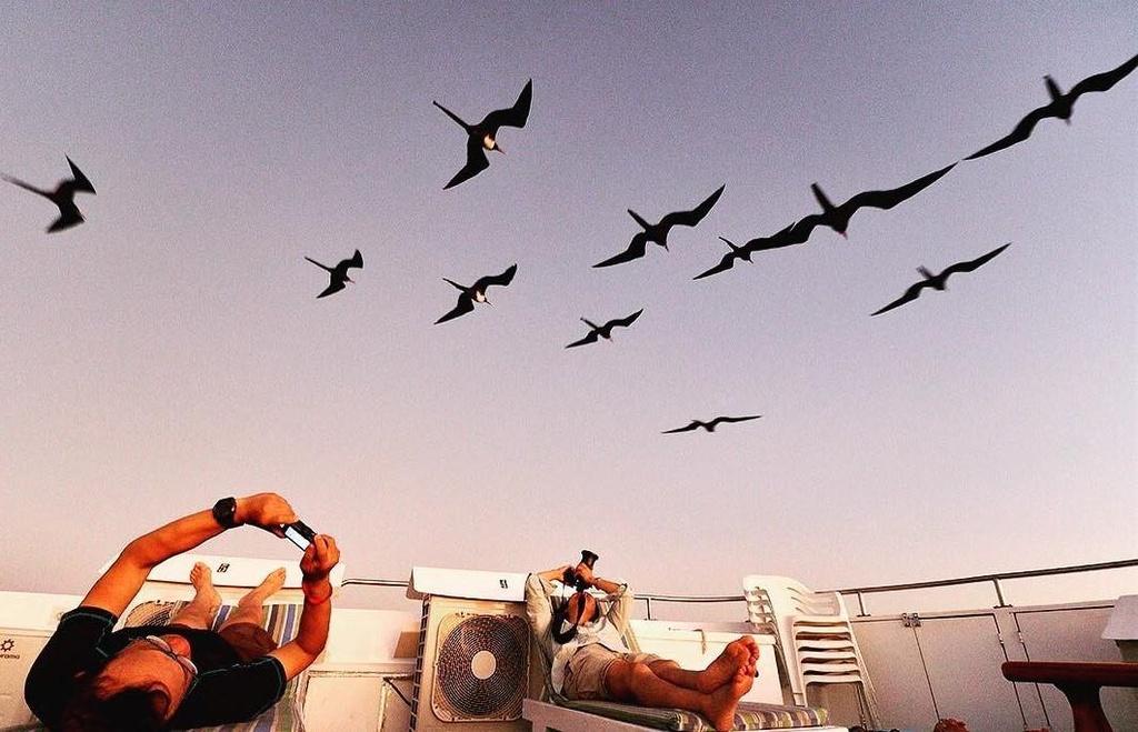 Dao Galapagos anh 9