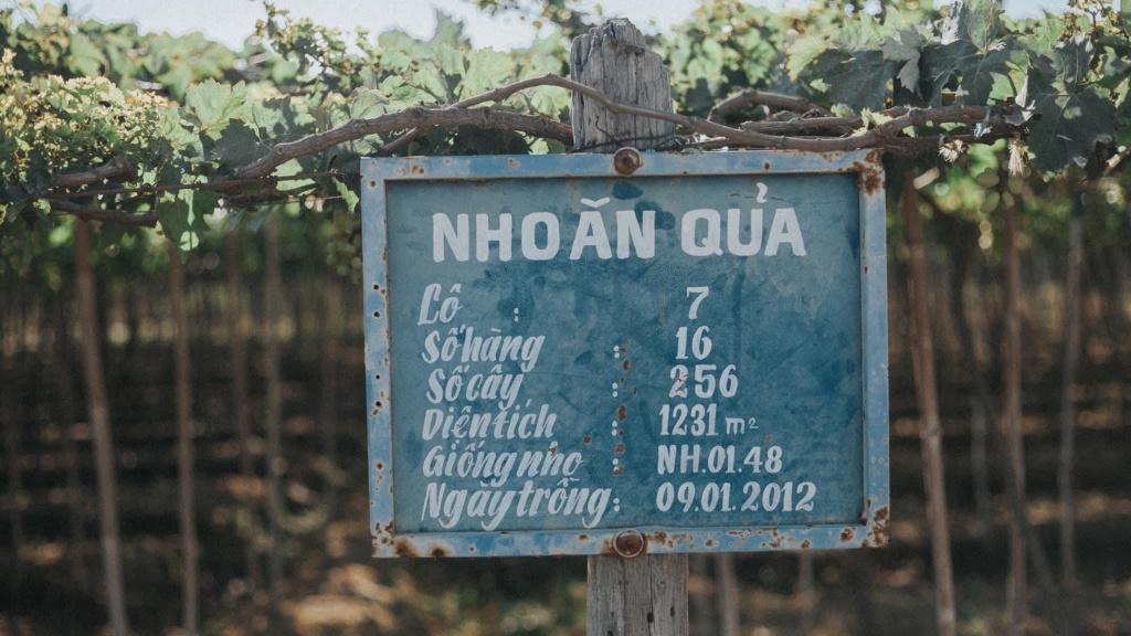Ninh Thuan noi tiep Da Nang, Quang Ninh thanh thu phu du lich chau A hinh anh 13