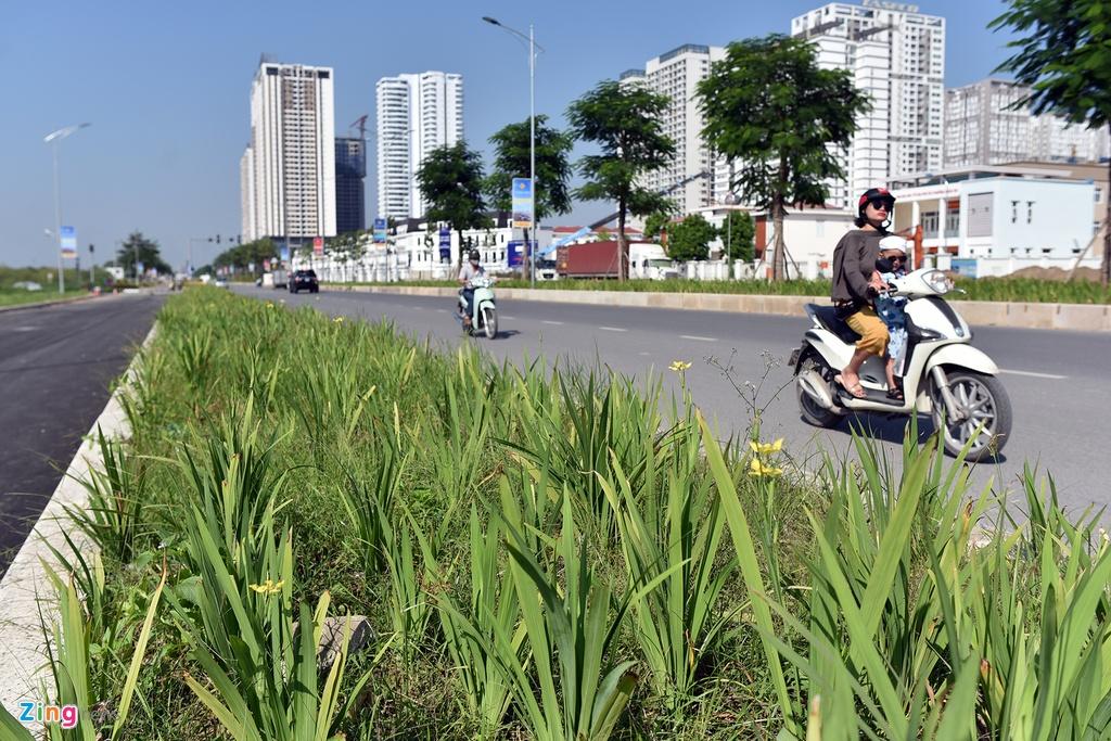 Tuyen duong 10 lan xe chay qua khu do thi khong lo o Ha Noi hinh anh 7