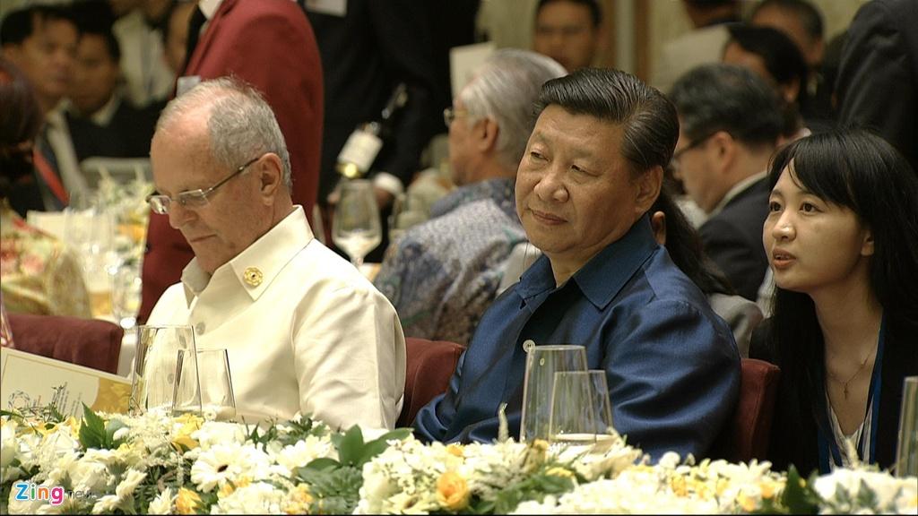 Chu tich nuoc Tran Dai Quang chu tri tiec chieu dai lanh dao APEC hinh anh 16