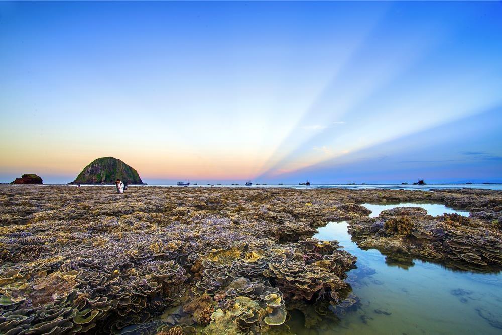 Mê đắm trước vẻ đẹp của 'thiên đường san hô' tại Phú Yên - Ảnh 4.