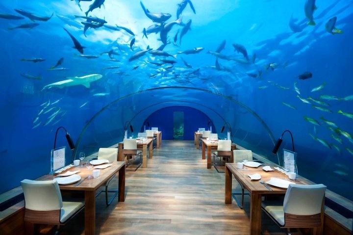 Maldives mo cua don du khach anh 4