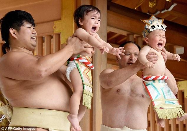 vo si sumo Nhat du tre con khoc anh 2