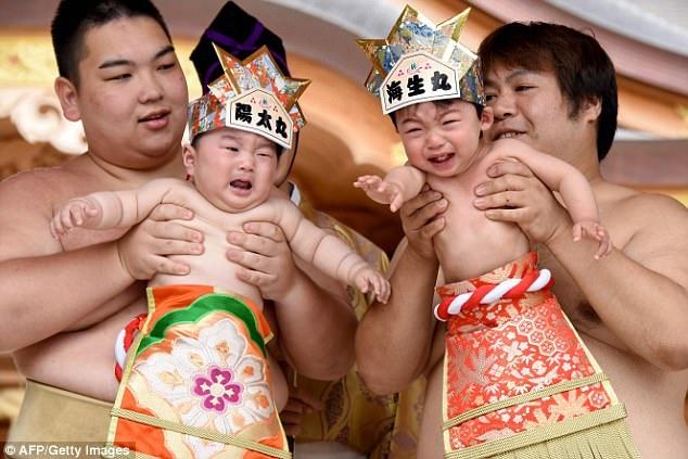 vo si sumo Nhat du tre con khoc anh 3
