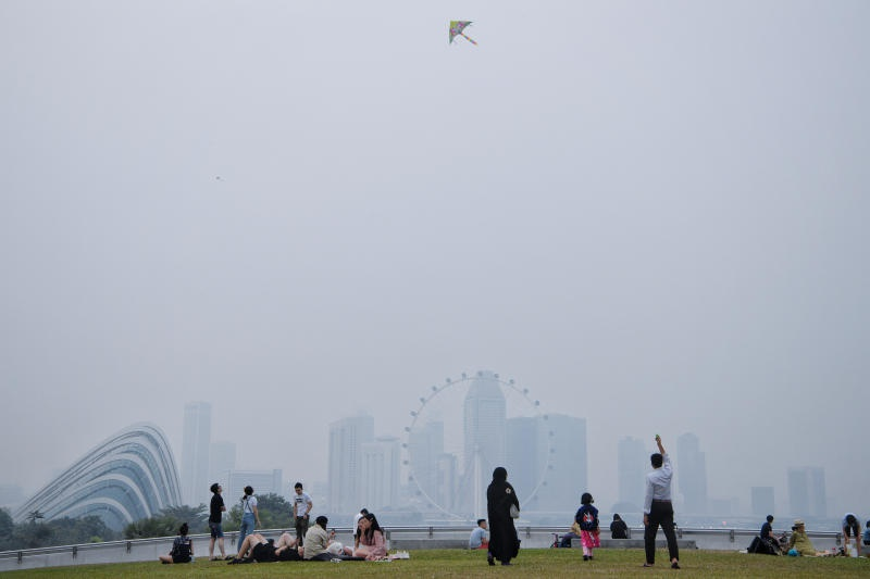 Singapore va Malaysia mit mu trong bui, Indonesia phu nhan la thu pham hinh anh 2