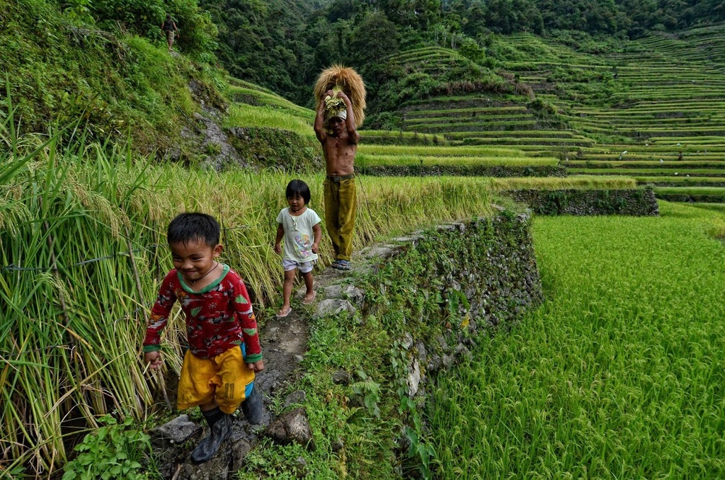 Trekking san may va 4 trai nghiem hap dan chi co o Philippines hinh anh 15