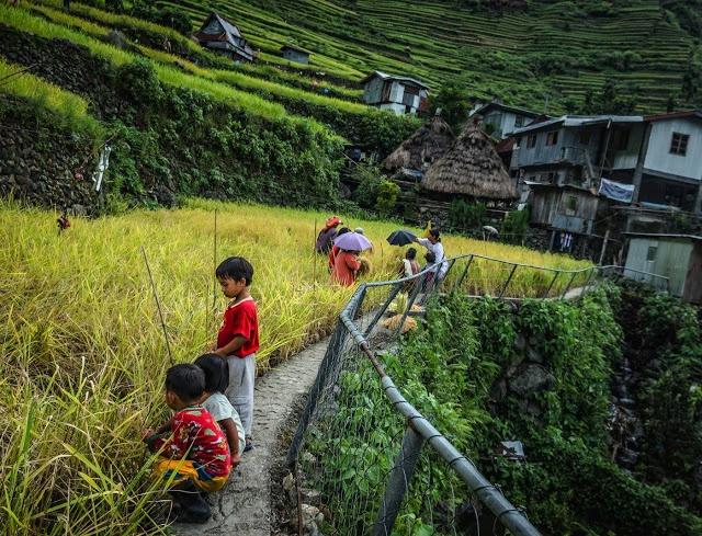Trekking san may va 4 trai nghiem hap dan chi co o Philippines hinh anh 16