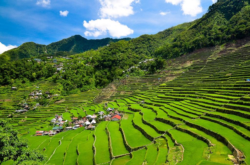 Trekking san may va 4 trai nghiem hap dan chi co o Philippines hinh anh 18