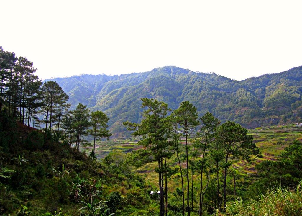 Trekking san may va 4 trai nghiem hap dan chi co o Philippines hinh anh 4