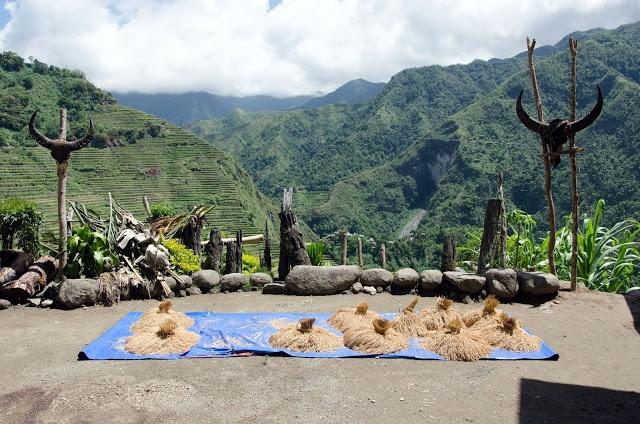 Trekking san may va 4 trai nghiem hap dan chi co o Philippines hinh anh 17