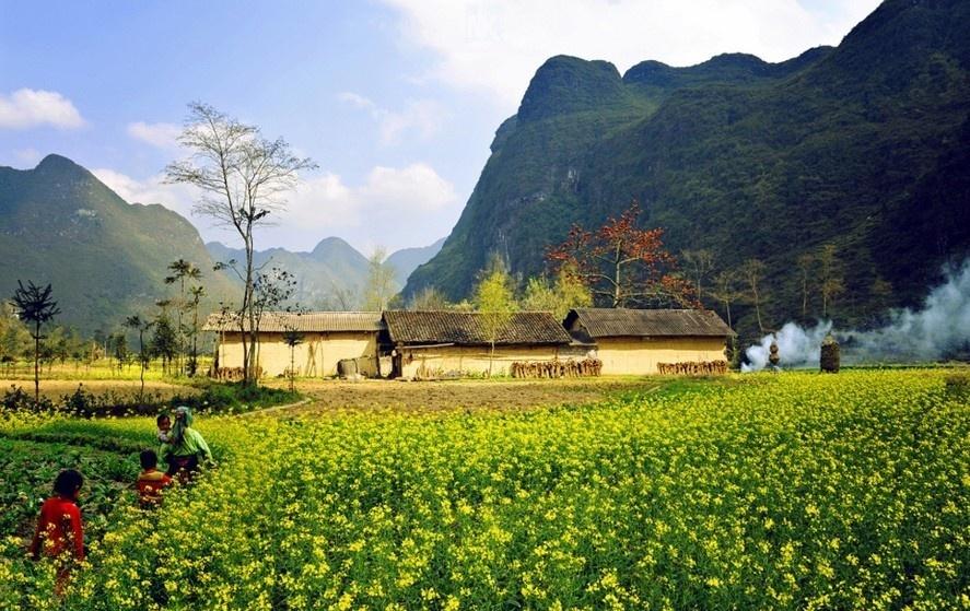 Moc Chau - diem check-in thu hut gioi tre hinh anh 2