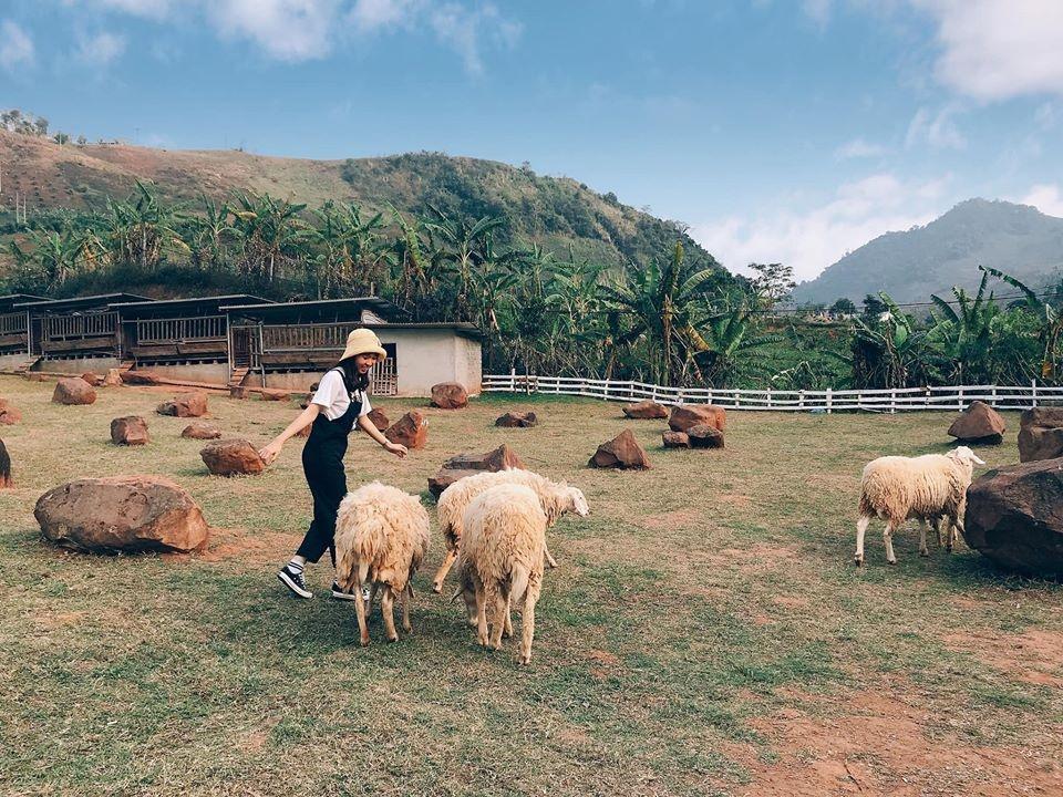 Moc Chau - diem check-in thu hut gioi tre hinh anh 13