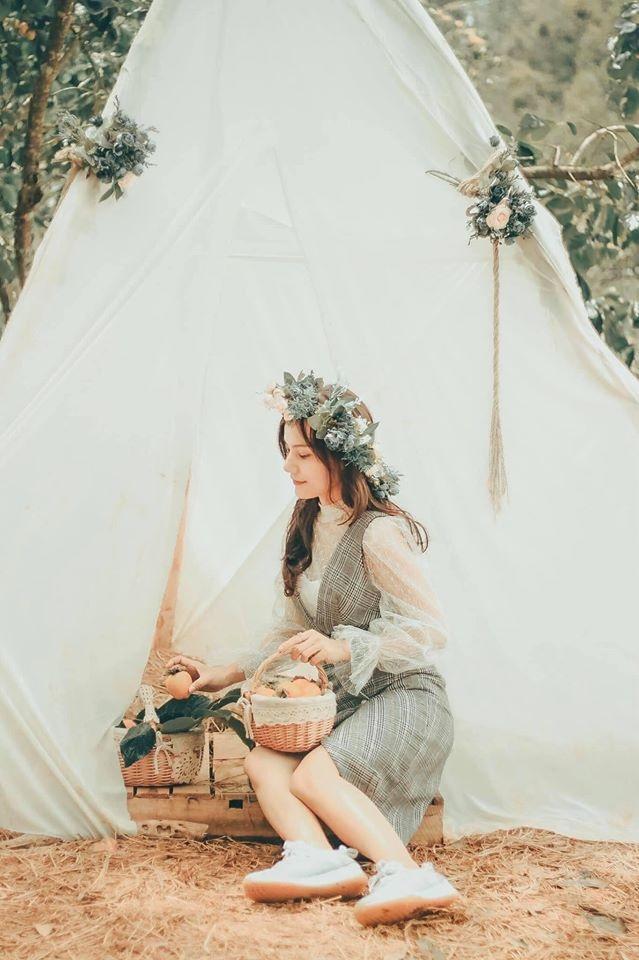 Nhung mua hoa thu hut gioi tre Viet check-in nam 2019 hinh anh 13