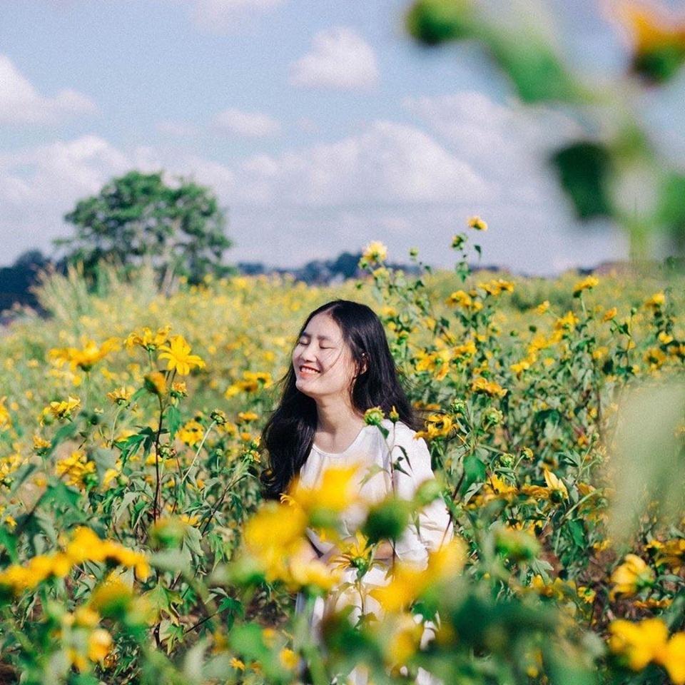 Nhung mua hoa thu hut gioi tre Viet check-in nam 2019 hinh anh 12