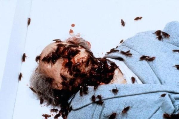Canh quay ghe ron nhat trong the gioi phim kinh di cua Stephen King hinh anh 2