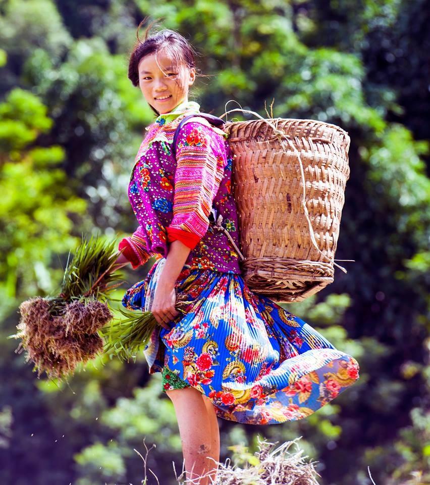 Ruong bac thang Hoang Su Phi anh 11