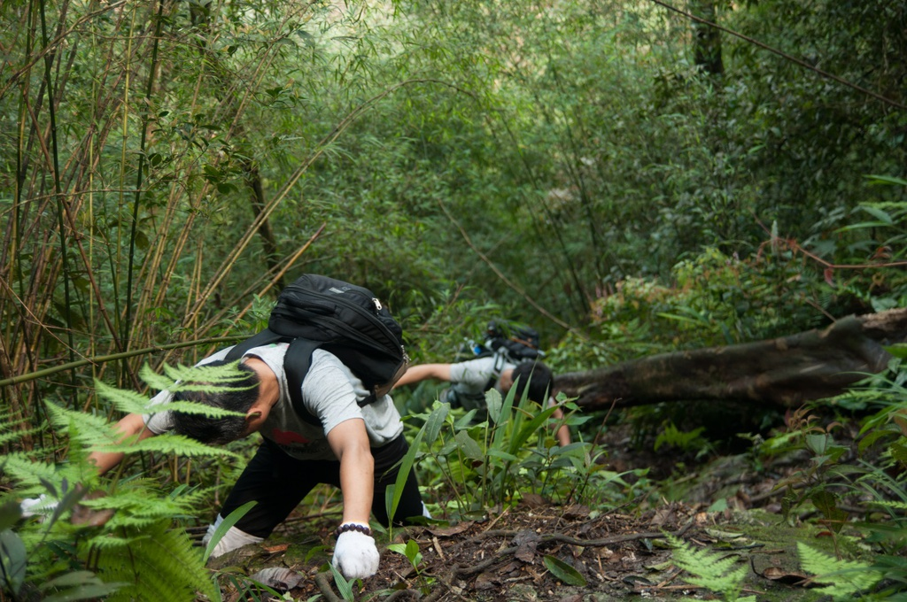 Trekking 3 dinh Tam Dao - thu thach ky nghi le 30/4-1/5 hinh anh 10