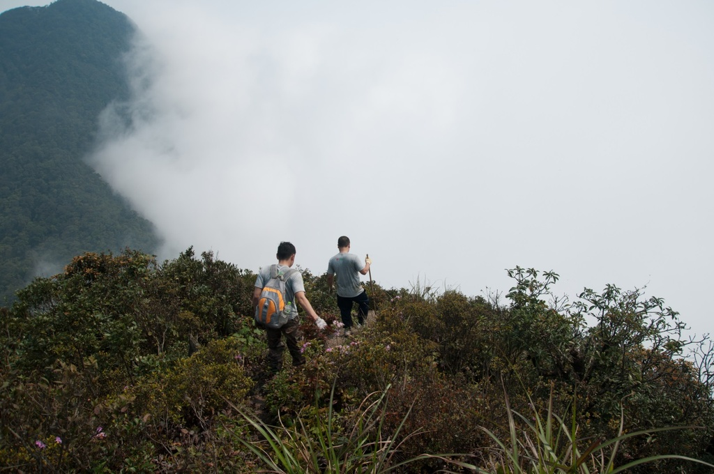 Trekking 3 dinh Tam Dao - thu thach ky nghi le 30/4-1/5 hinh anh 11