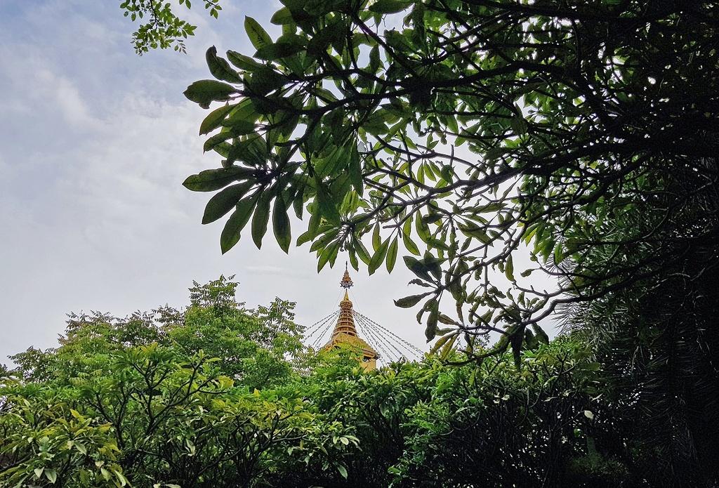 Thien vien xanh mat nhu oc dao o Bangkok hinh anh 9
