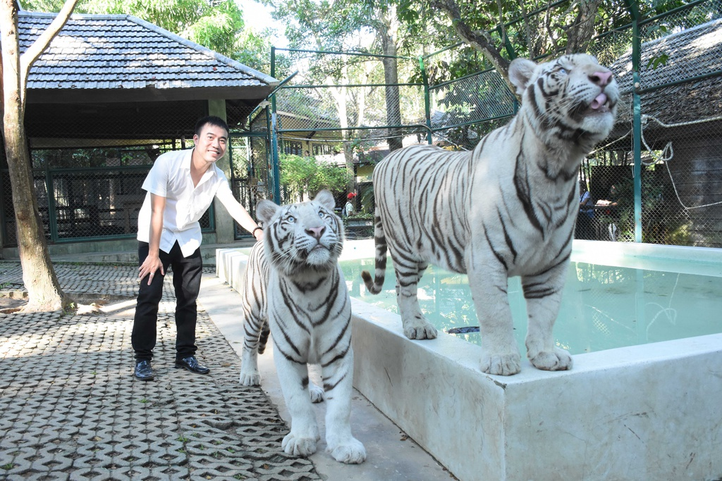 #MyTour: Nhung net dep tho mong cua Chiang Mai hinh anh 21