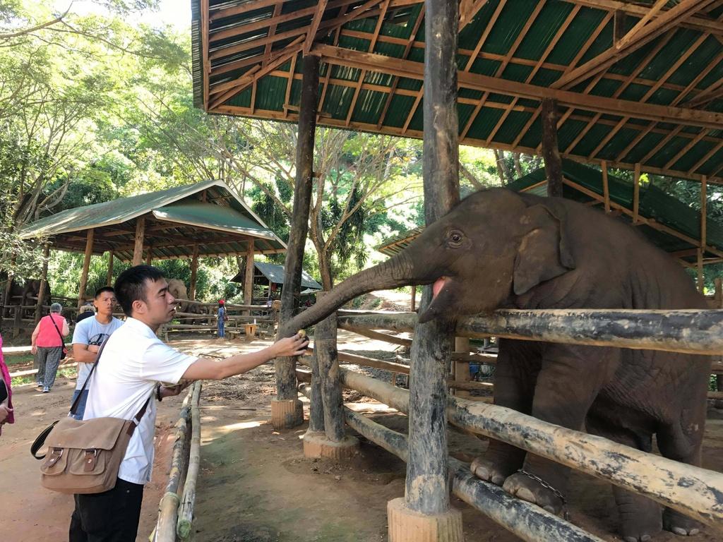 #MyTour: Nhung net dep tho mong cua Chiang Mai hinh anh 15