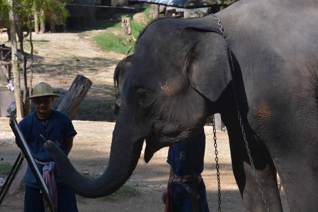 #MyTour: Nhung net dep tho mong cua Chiang Mai hinh anh 13