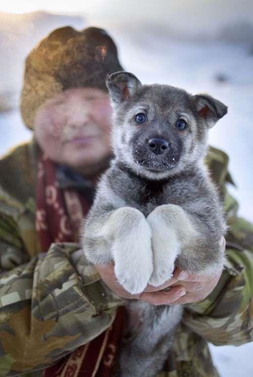 Ngôi làng lạnh nhất thế giới, nhiệt độ chạm âm 71 độ C - Ảnh 9