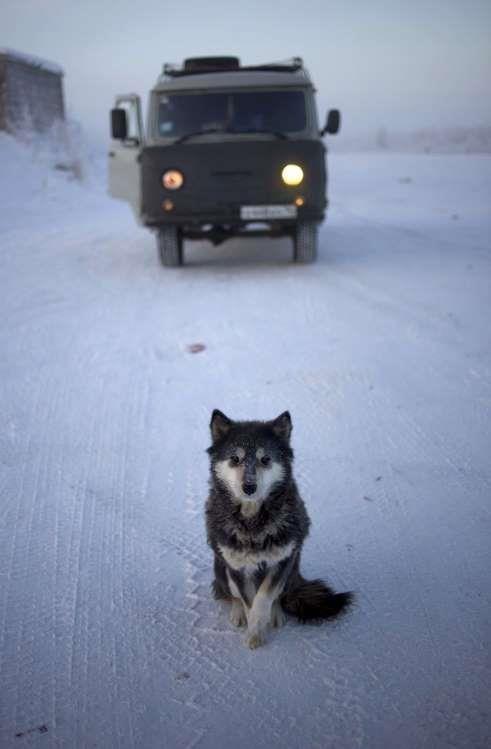 Ngôi làng lạnh nhất thế giới, nhiệt độ chạm âm 71 độ C - Ảnh 10