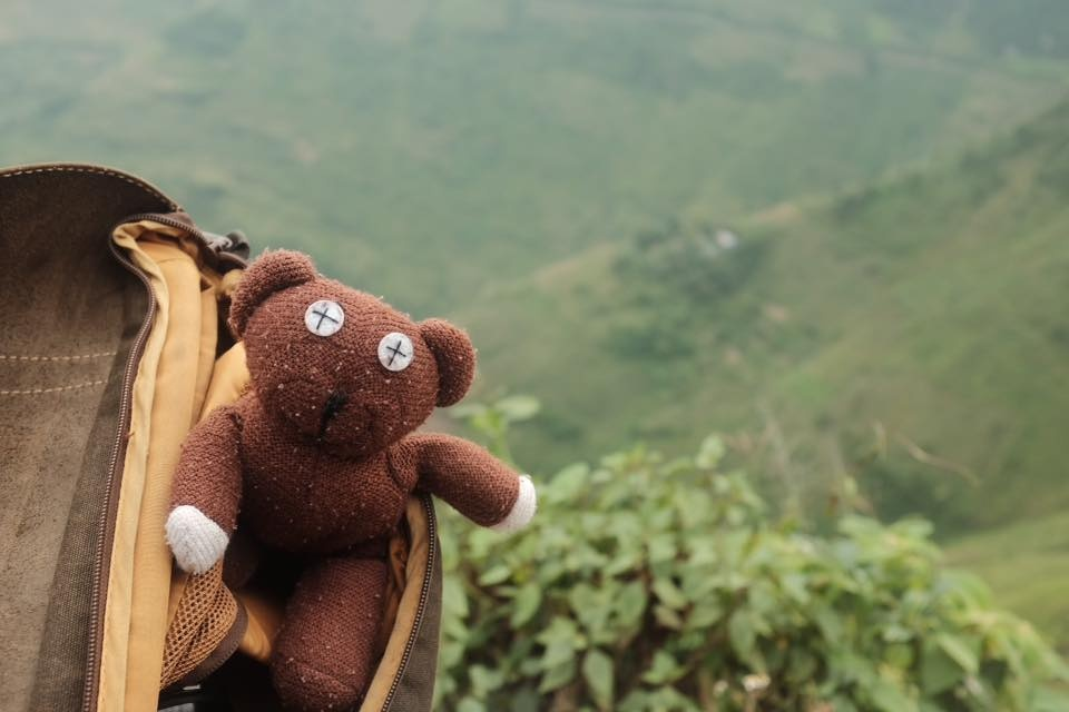 Chang trai dua gau Teddy di xuyen Viet hinh anh 1